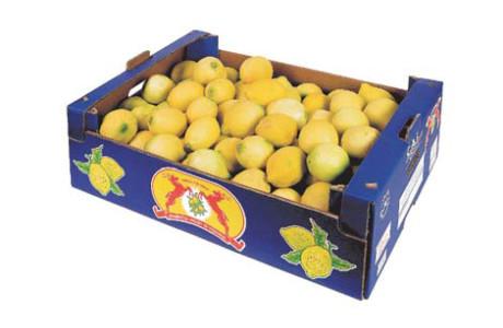 sfuso-limoni